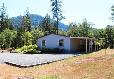 Jackson County, Josephine County Single Family Home For Sale: 100 Fielder Creek Road