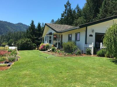 Jackson County, Josephine County Single Family Home For Sale: 529 W Evans Creek Road