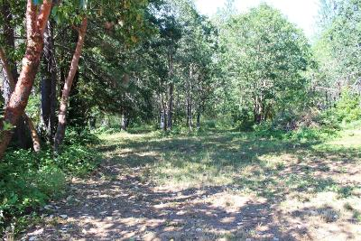 Josephine County Residential Lots & Land For Sale: 286 Caves Highway