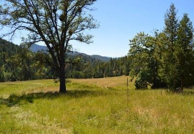Residential Lots & Land For Sale: Beaver Creek Rd/Ashland Loop Road