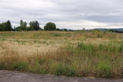 Jackson County, Josephine County Residential Lots & Land For Sale: 5468 Bierson Way