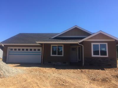 Jackson County, Josephine County Single Family Home For Sale: 227 Retirement Lane