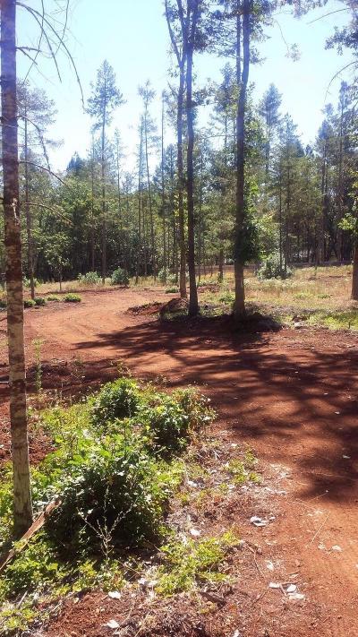 Josephine County Residential Lots & Land For Sale: 3366 Riverbanks Road