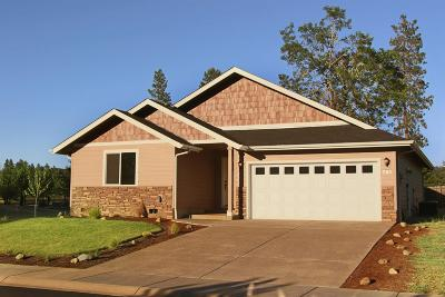 Jackson County, Josephine County Single Family Home For Sale: 209 Pomeroy View Drive