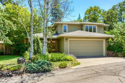 Ashland Single Family Home For Sale: 1040 Canyon Park Drive