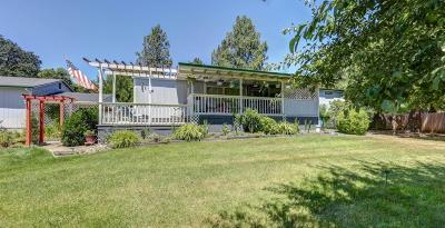 Merlin Single Family Home For Sale: 176 Ward Road