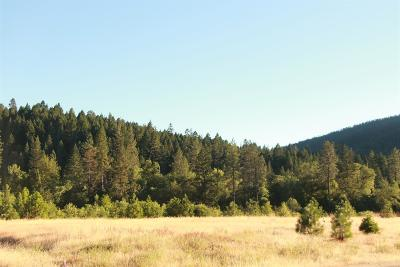 Josephine County Residential Lots & Land For Sale: 237 Pomeroy View Drive