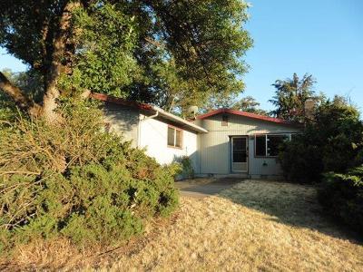 Single Family Home For Sale: 2160 E McAndrews Road