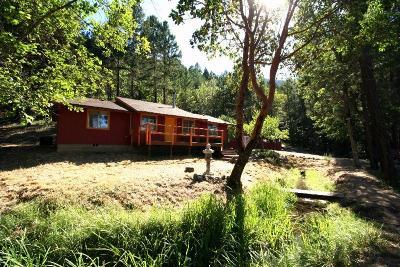 Applegate Single Family Home For Sale: 3952 Little Applegate Road