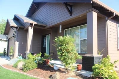Phoenix Single Family Home For Sale: 421 Phoenix Hills Drive