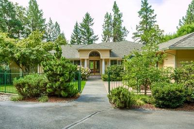 Josephine County Single Family Home For Sale: 12850 N Applegate Road