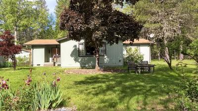 Grants Pass Single Family Home For Sale: 819 Shan Creek Road