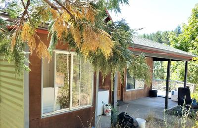 Josephine County Single Family Home For Sale: 350 Shan Creek Road
