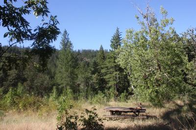 Josephine County Residential Lots & Land For Sale: 201 Becky Springs Drive