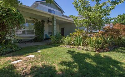 Central Point Single Family Home For Sale: 1010 Sandoz Street