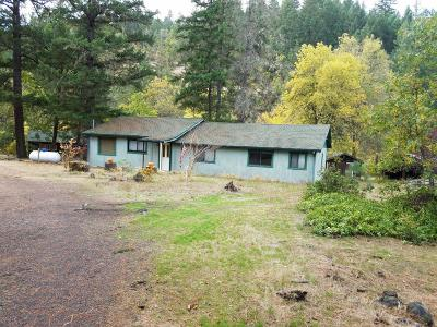 Jackson County, Josephine County Single Family Home For Sale: 4389 Highway 227