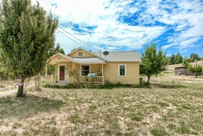 Jackson County, Josephine County Single Family Home For Sale: 1117 S Stage Road