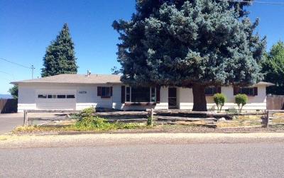 Single Family Home For Sale: 3278 Britt Avenue