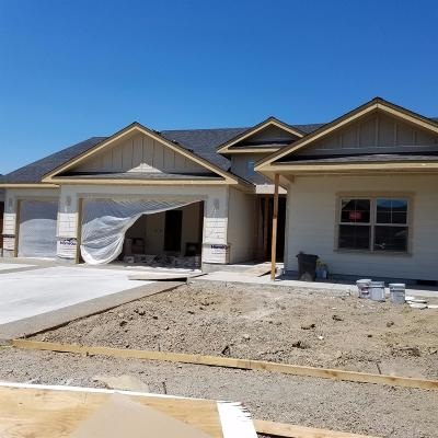Single Family Home For Sale: 3931 Windgate Street