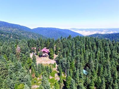 Ashland Single Family Home For Sale: 480 Mt Ashland Ski Road