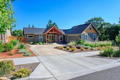 Ashland Single Family Home For Sale: 2391 Blue Sky Lane