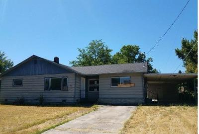 Single Family Home For Sale: 1049 Ingrid Street