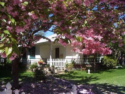 Single Family Home For Sale: 224 Portland Avenue