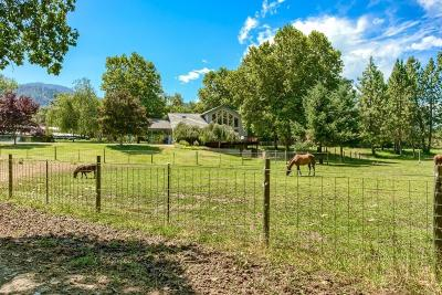 Jackson County, Josephine County Single Family Home For Sale: 12591 Williams Highway