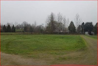 Josephine County Residential Lots & Land For Sale: 2300 Williams Highway