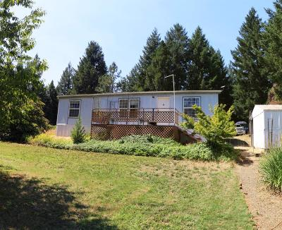 Rogue River Single Family Home For Sale: 1280 Pleasant Creek Road