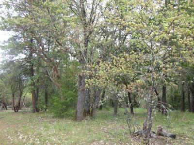 Residential Lots & Land For Sale: 5000 Kenney Road