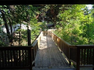 Medford Single Family Home For Sale: 2617 Siskiyou Boulevard