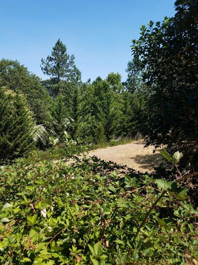 Josephine County Residential Lots & Land For Sale: 543 NW Valley View Drive