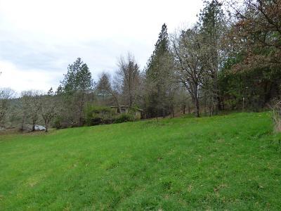 Jackson County, Josephine County Single Family Home For Sale: 18505 E Evans Creek Road