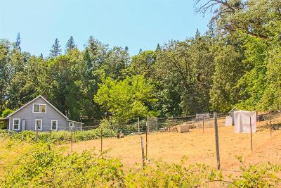 grants pass Single Family Home For Sale: 1020 Fish Hatchery Road