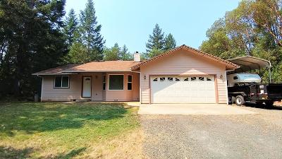 grants pass Single Family Home For Sale: 2660 Riverbanks Road