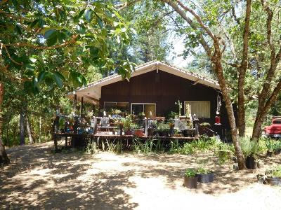 Josephine County Single Family Home For Sale: 24524 Redwood Highway