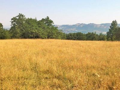 Jackson County, Josephine County Residential Lots & Land For Sale: 14200 E Antelope Road