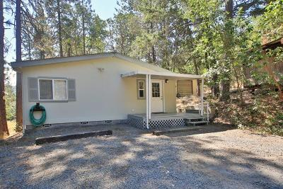 Josephine County Single Family Home For Sale: 591 Homewood Road
