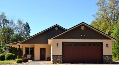 Josephine County Single Family Home For Sale: 1095 Ingalls Lane
