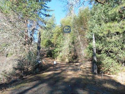 Jackson County, Josephine County Single Family Home For Sale: 12385 Butte Falls Highway