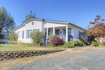 Josephine County Single Family Home For Sale: 3160 Woodland Park Road