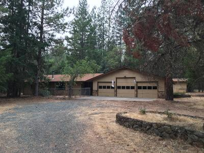 Rogue River Single Family Home For Sale: 945 Queens Branch Road