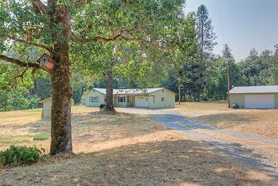 Gold Hill Single Family Home For Sale: 1555 Birdseye Creek Road