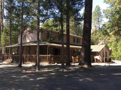 Grants Pass Single Family Home For Sale: 996 Ewe Creek Road