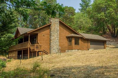 Rogue River Single Family Home For Sale: 4524 E Evans Creek Road Road