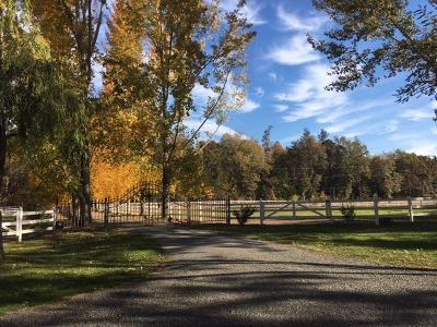 Jackson County, Josephine County Single Family Home For Sale: 14000 Table Rock Road