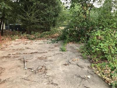 Residential Lots & Land For Sale: 537 W River Street