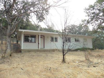 Jackson County, Josephine County Single Family Home For Sale: 860 Humbug Creek Road