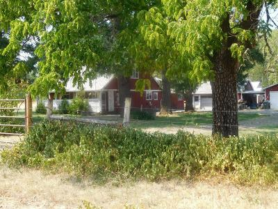 Cave Junction Single Family Home For Sale: 2180 Dick George Road